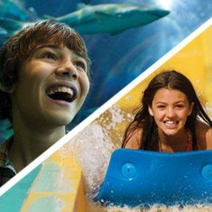Weekday Ticket 50% OffSea World Orlando or Aquatic Orlando