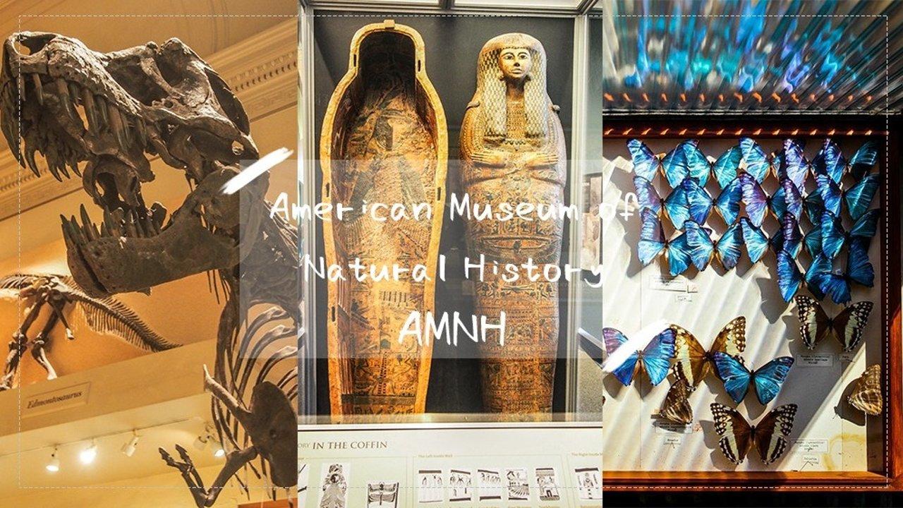 2019纽约必看之美国自然历史博物馆   自由捐献门票、展馆推荐、停车路线