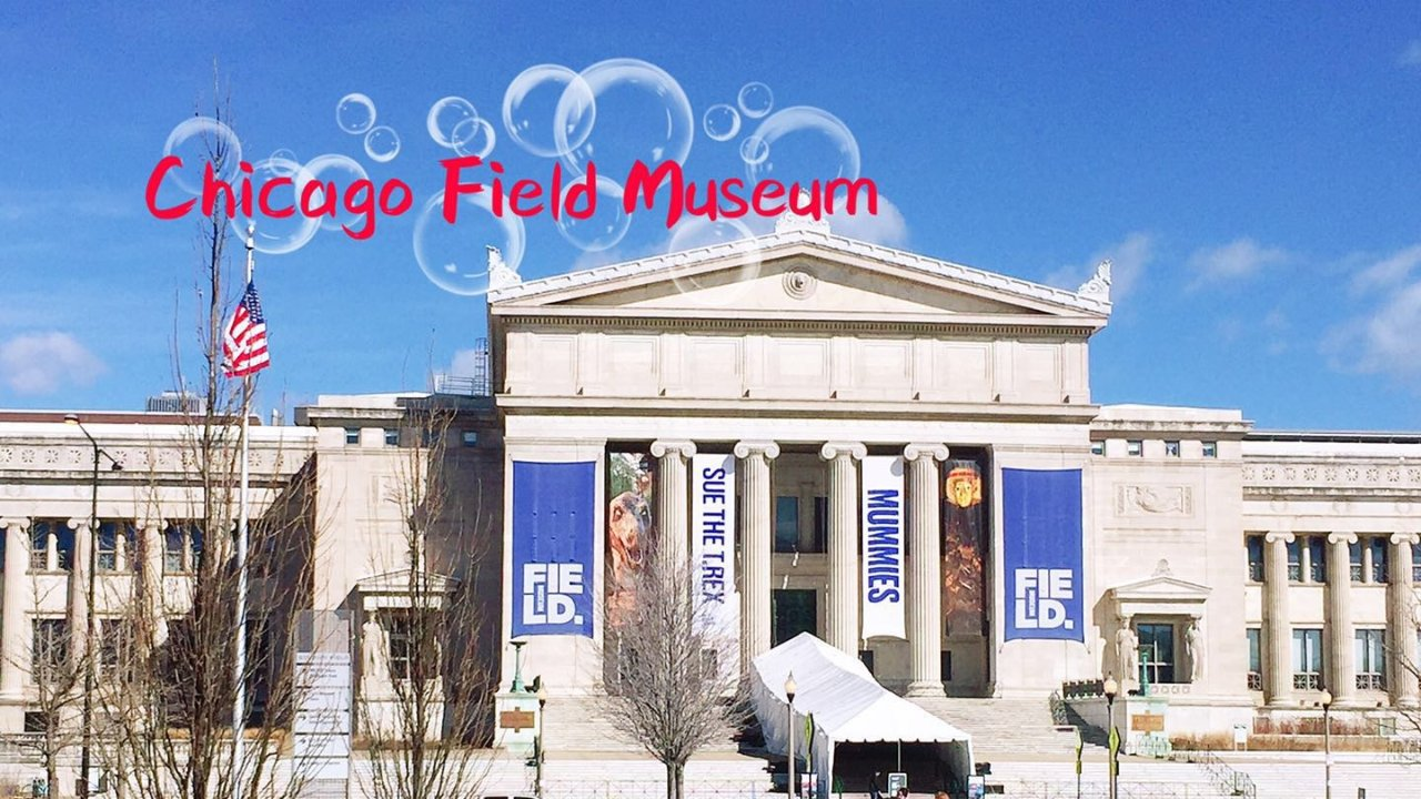 世界最有名的恐龙, 恐龙迷去过没? | Chicago Field Museum 自然科学博物馆