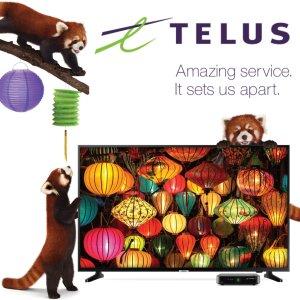 中奖名单公布!最后一天:TELUS 研科 $0享7个中文频道  无限上网流量