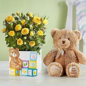 15% Off1-800-Flowers.com New Baby Flowers & Gifts Sale