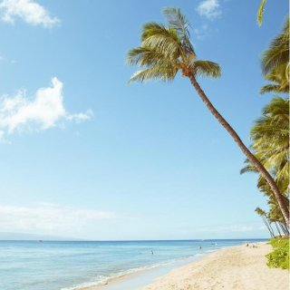 From $338 RT NonstopSan Francisco to Maui or Honolulu