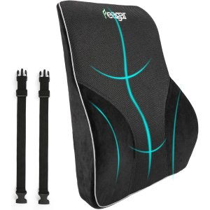 Feagar Lumbar Support Pillow/Back Cushion