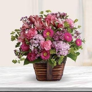 Bloom's Today Flower