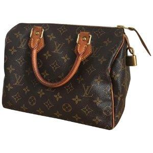 Louis VuittonSpeedy 老花包
