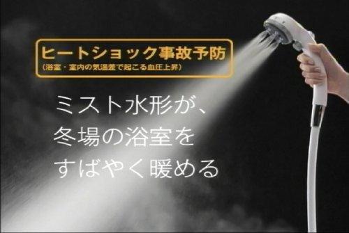 Takagi 淋浴喷头 按摩花洒 JS436GY