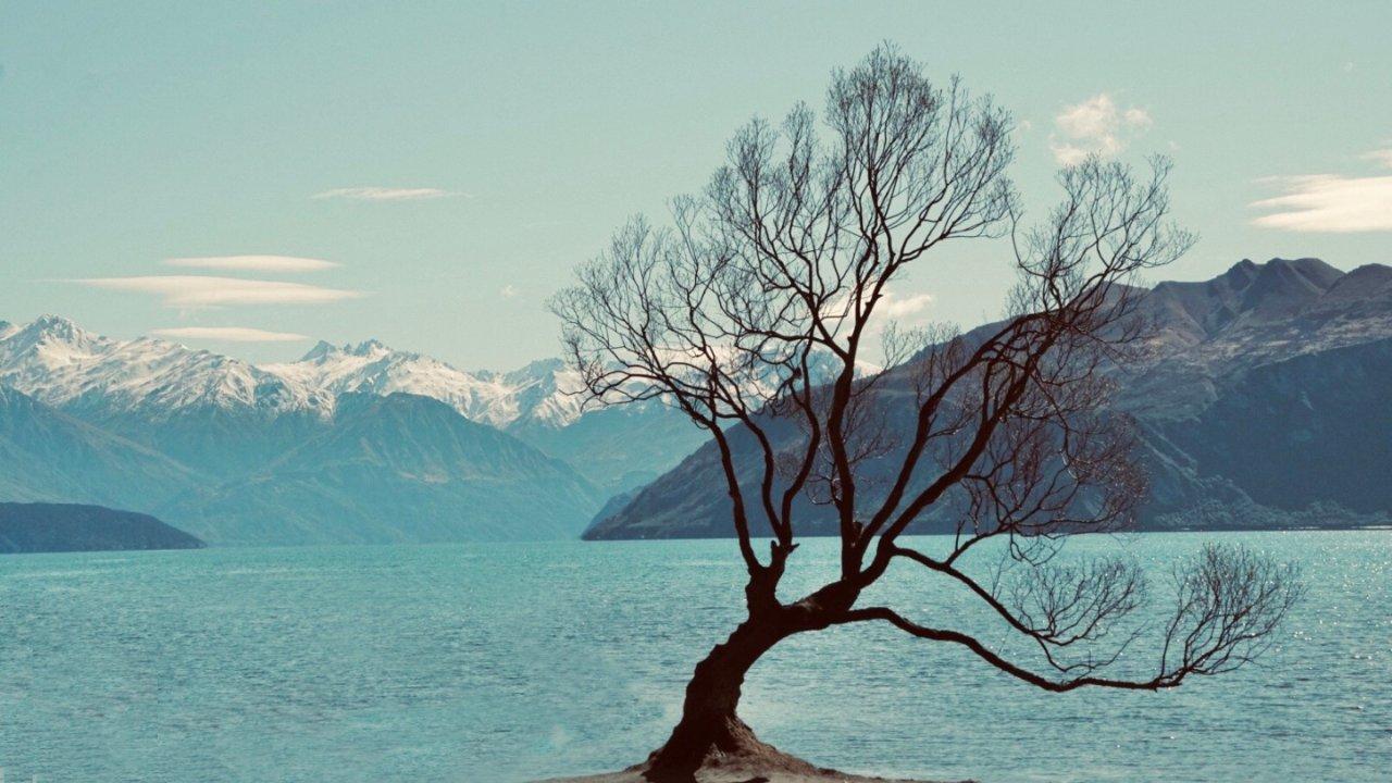 新西兰南岛游玩攻略 一辈子一定要去一次无论年轻还是年老
