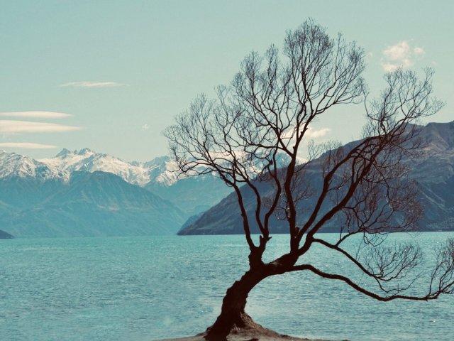 新西兰南岛游玩攻略 一辈子一定要去...