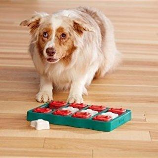 85折起 低至 $9.15狗狗外出健康喂食器 益智狗狗喂食玩具