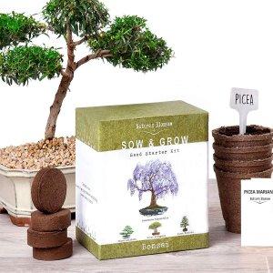 $16.99(原价$32.99)闪购:Nature's  Blossom 观赏盆景树种子4包+种植土套装