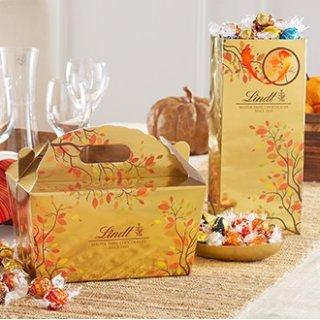 300颗只需$70 一颗仅$0.23Lindt 精选松露巧克力礼盒万圣节限时促销