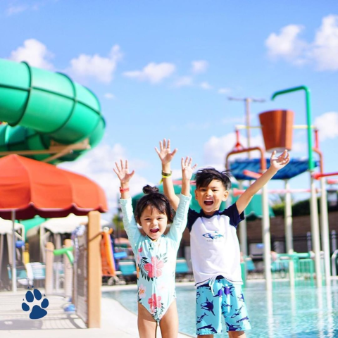 Up to 50% OffGreat Wolf Lodge Waterpark Stay