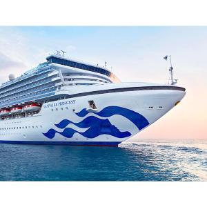 $1529起  赠最高$600船上消费价格再降:公主邮轮15天夏威夷邮轮 洛杉矶往返