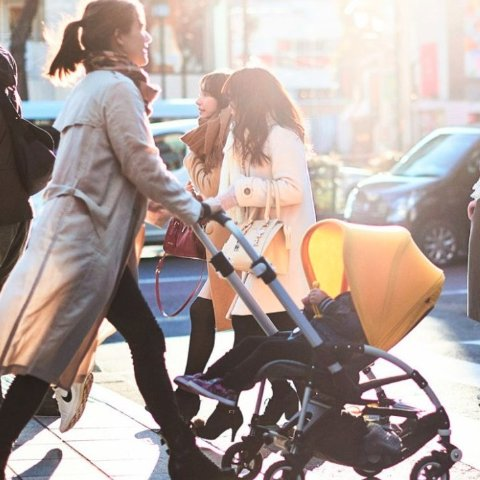 20% OffBugaboo Bee5 Stroller Sale