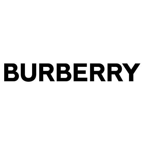 IntroductionBurberry Brand