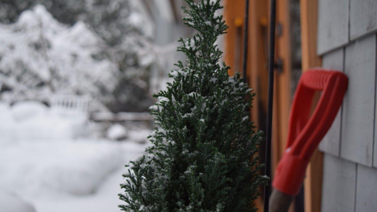 干货 | 加拿大冬季除雪指南:铲雪窍门、除雪服务、除雪设备租赁