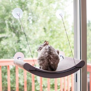 K&H Pet Products EZ Mount Window Scratcher Kitty Sill Cradle, Tan - Chewy.com