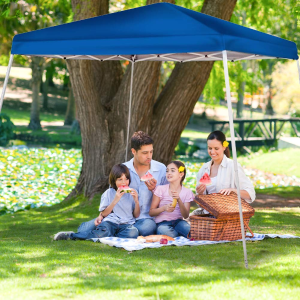 Up to 33% OffAmazon Select Canopies, Carports and Accessories Sale