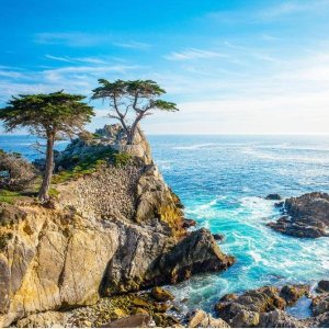 $102起 游览优胜美地国家公园加州一号公路3日跟团游览 洛杉矶出发