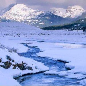 $598起 含酒店+交通+导游5天冬季黄石公园跟团游 邂逅黄石雪国秘境 盐湖城往返