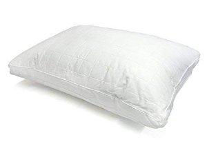 $6.05白菜价:Century Home 微凝胶真丝透气舒适枕