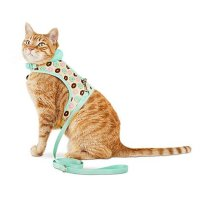 BOND & CO. 无伤害猫咪马甲+遛猫绳