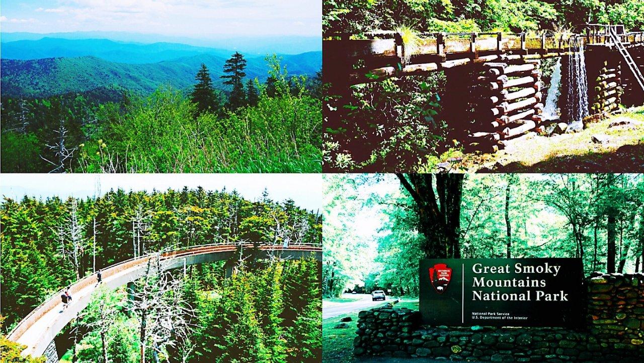 五月下旬的五天四夜   Great Smoky Mountains 国家公园及周边