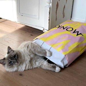 3折起+额外9折 10€柠檬黄卫衣MONKI 爆款精选大促 超低价收美衣美鞋