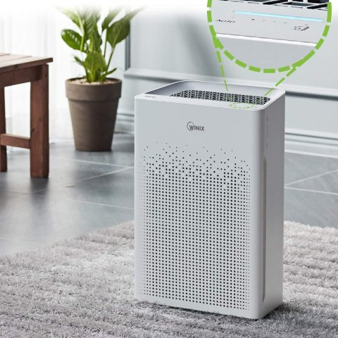 From $99Winix 5500-2 Air Purifier with True HEPA, PlasmaWave and Odor Reducing Washable AOC Carbon Filter