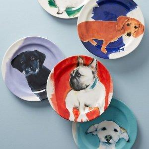 低至8折+包邮 汪汪无处不在Nordstrom 精选狗狗主题装饰品、狗狗用品热卖