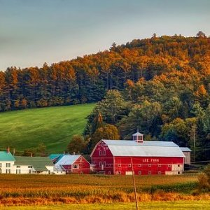 As Low As $2997-Nt Canada & New England Fall Foliage Cruise from Quebec City