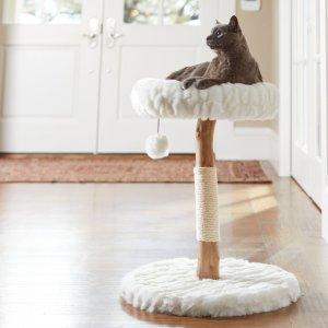 低至5折 封面款$49.69Chewy  猫咪家具猫树、猫抓板促销