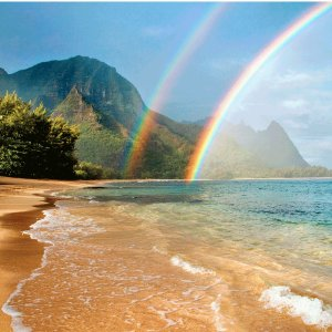 From $1959  Save Up to 40%15 Day Hawaii Cruise Departure From Los Angeles @ Princess Cruise Line