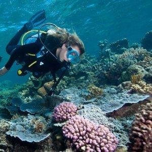 低至$95 浮潜 + 午餐Sunlover Reef Cruises 大堡礁一日游轮之旅