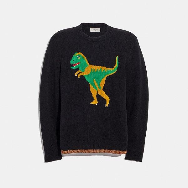 Rexy 小恐龙毛衣