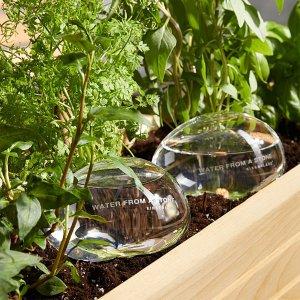 Simons Maison带木塞吹制浇水玻璃瓶2个