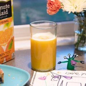 Minute Maid 100%纯橙汁10oz 24瓶装