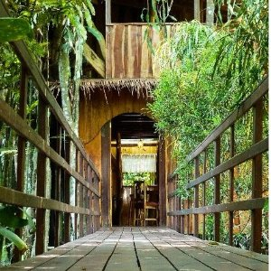 From $300 Enchanted Tree House experience In Costa Rica