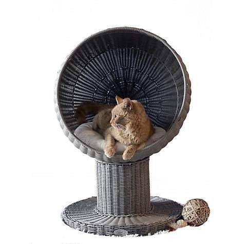 The Refined Feline 猫球