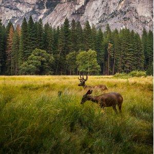 美景可不止国家公园 快列入打卡清单吧美国6个小众但很美的旅行目的地盘点