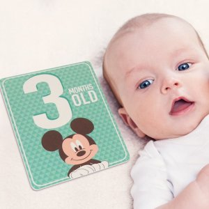 As low as $4.49Baby's First Milestone Stickers, Albums & More