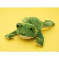 kiwico 自制青蛙玩偶并了解内部器官知识,适合年龄 5+