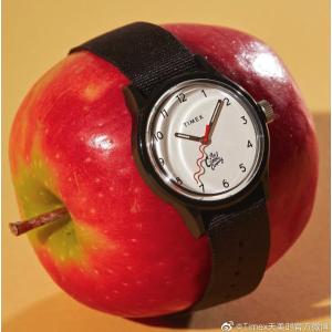低至3.7折+额外8折+免邮最后一天:Timex 手表特卖 水晶腕表$31 平价Gucci$69
