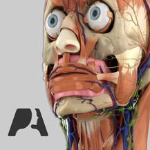 $0.99Pocket Anatomy 2018 iOS App