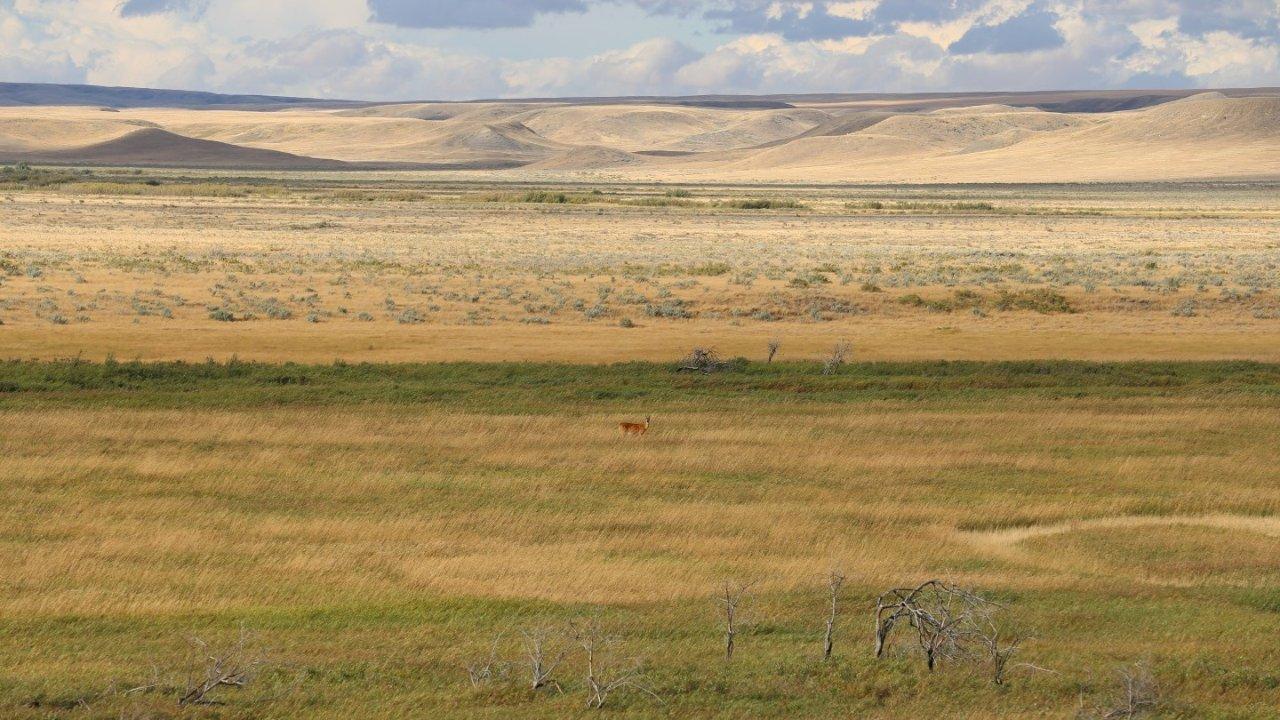 6376km | 横跨加拿大,我们与自然竟如此靠近❤