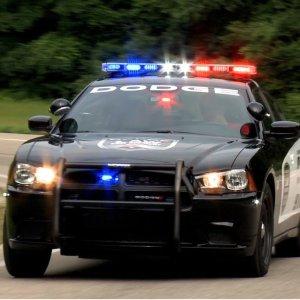 $69(原价$599)Exotic Car Experience 多伦多异国情调汽车试驾 来开警车啊