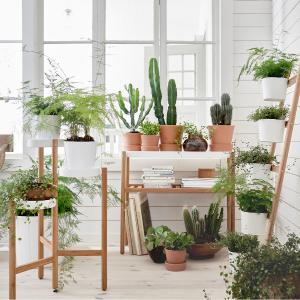 5月17-21日IKEA 宜家 全场花盆7.5折限时特惠