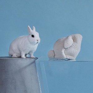 最高减$50011.11独家:Loewe专场,Gate、Puzzle、小兔包秋冬上新