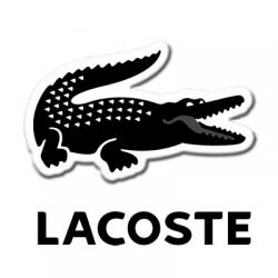 低至3折+额外6.5折+直邮中国即将截止:Lacoste 鞋履精选 低至¥260 一起散发运动的优雅