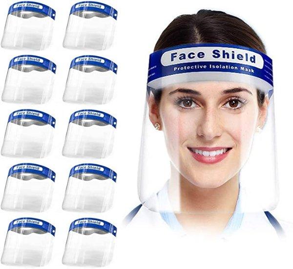 防护面罩 10个